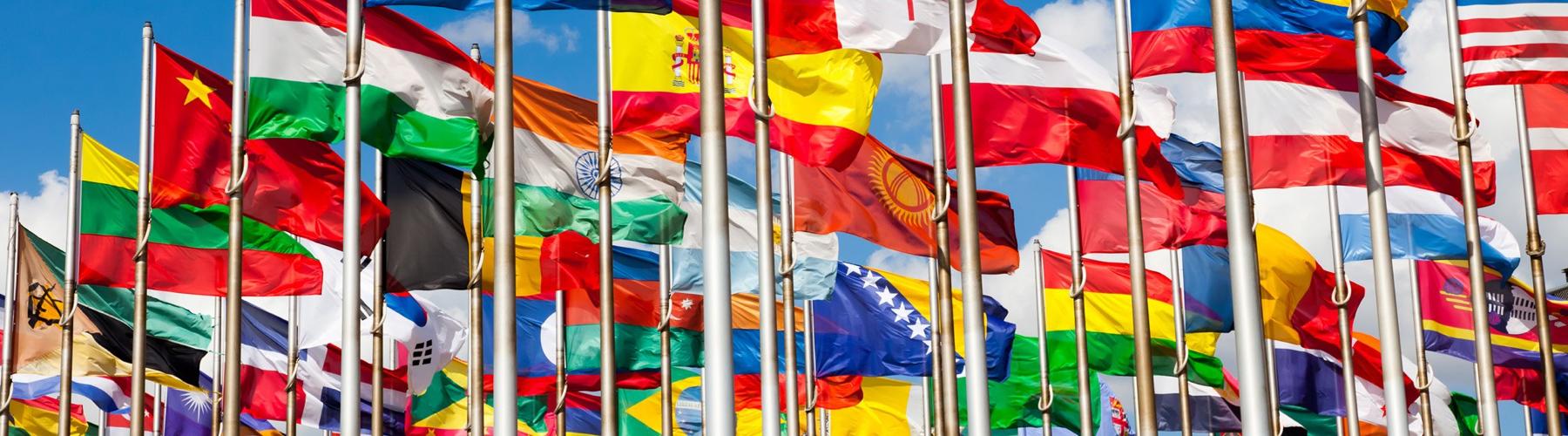 ¿Qué Banderas de Países Tienen el Mejor Diseño?