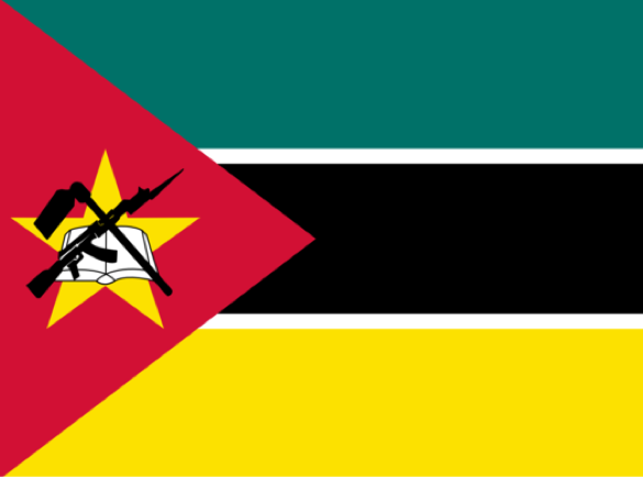 Mozambique | Which countries have the craziest flags