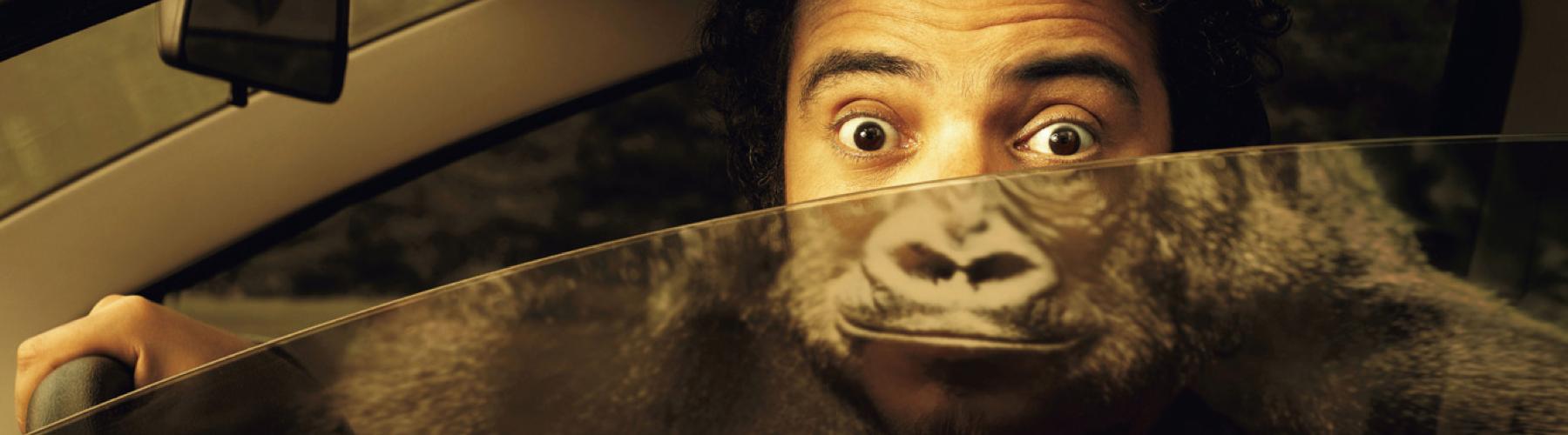 5 Campañas de Marketing Efectivas Utilizando Pegatinas